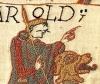 Guillaume le conquérant, mari de Mathilde qui n'a pas brodé la pâtisserie de Bayeux, mais quand même