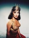 Gina Lollobrigida, l'une des reines de Saba